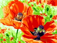 Flowers Canvas Painting Frameless Pictures Diy Painting By Numbers Hand Painted On Canvas Decoration Painting Flower