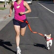 Walking Running Jogging Pet Puppy Waist Belt Leash