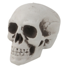 Mini Plastic Human Skull Decor Prop Skeleton Head Halloween Coffee Bars Ornament