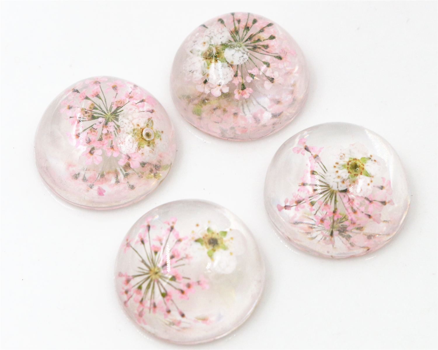 New Fashion 10pcs 20mm Pink Natural Dried White Chrysanthemum Flowers Cabochons Cameo-V3-05