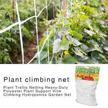 Red de malla de poliéster de 5/10m para flores de vid Morning Glory, plantas de jardín, Red de escalada, soporte para cultivo de vid de pepino