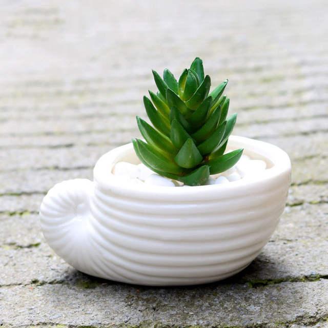 2018 6 Pcs Ensemble Mini Blanc Petit Pot De Fleurs Shell Forme En