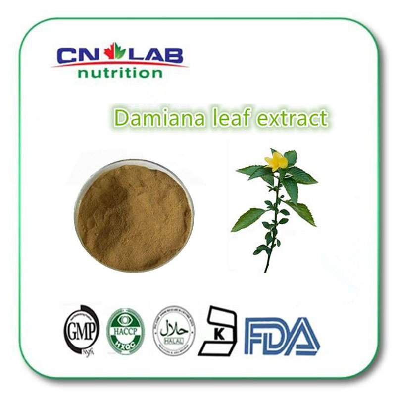 GMP Factory Supply natural damiana leaf extract powder 1000g high quality natural damiana leaf extract manufacturers to supply high quality 100g wild chrysanthemum extract 30 1