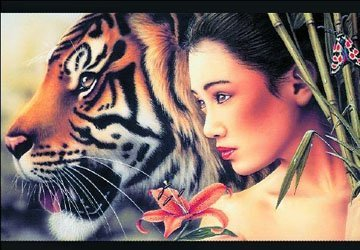 Super Special Offer! High Quality Animals Tigers 30*40cm HD PET Lenticular 3D Picture, total 250 design can mixed, Free Shipping