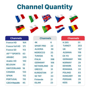 Image 2 - 3 mois IP TV espagne Canada Portugal France IPTV allemagne italie IP TV pour appareil Android Test gratuit IPTV italie France turquie IP TV