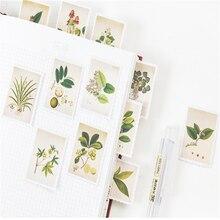 20 חבילות/הרבה בציר צמחי מיני נייר מדבקת חבילה DIY יומן קישוט דבק מדבקת רעיונות