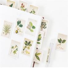 20 упаковок/партия, винтажные растения, мини бумажная наклейка, упаковка, сделай сам, дневник, украшение, клейкая наклейка, скрапбукинг