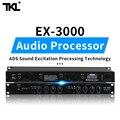 TKL 2 канала звук аудио Exciter процессор динамик управление pro аудио процессор protea pro сценическое аудио оборудование