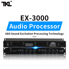 TKL 2 channels Sound Audio Exciter Processor speaker management pro audio processor protea pro stage audio equipment