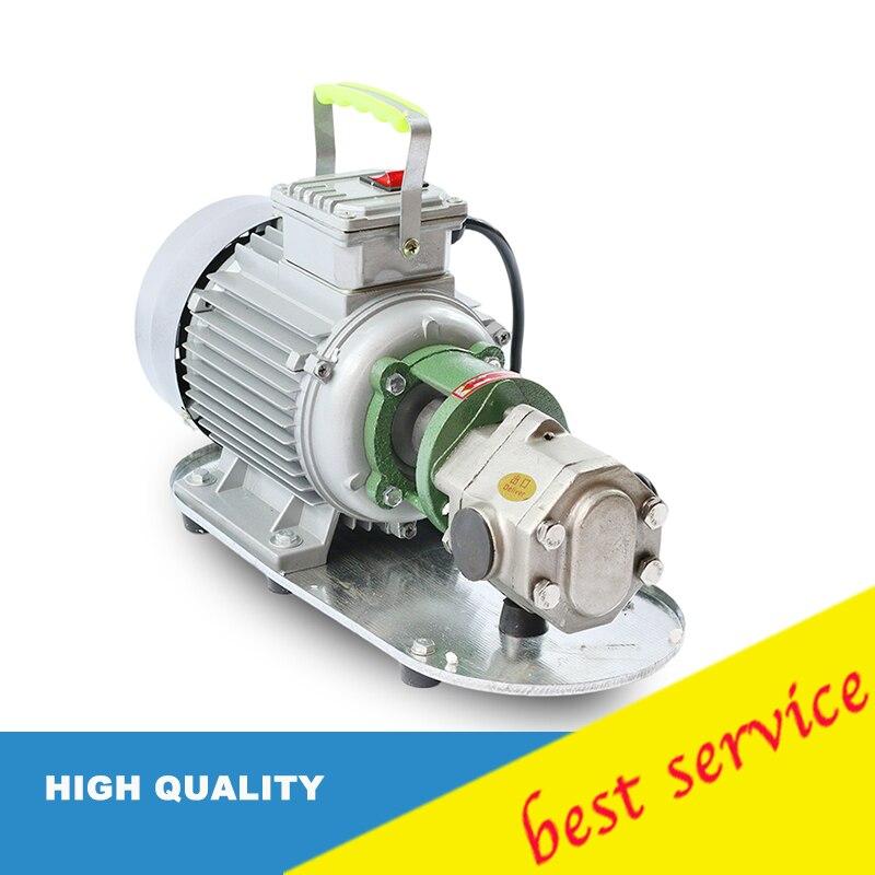 WCB50 Power Stainless Steel WCB50 Mini Gear Oil Pump