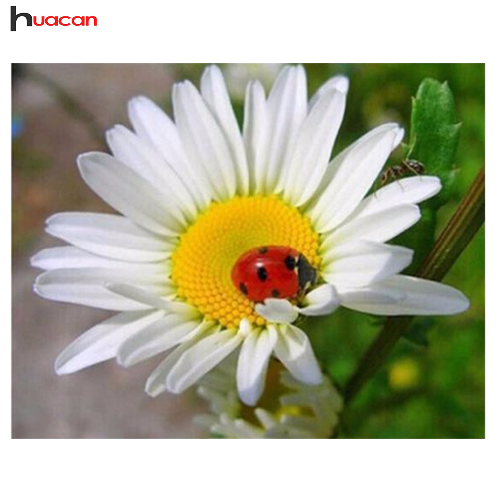 HUACAN Diamond Embroidery Flower White Daisy 3D Full Square Rhinestones Wall Decor Diy Diamond Painting Spring Gifts