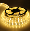 DC12V 5M SMD 5050 5M 600 leds LED Strip Light With Silicon Tube IP 67 Waterproof Flexible Led Tape RGB White Warm White Color