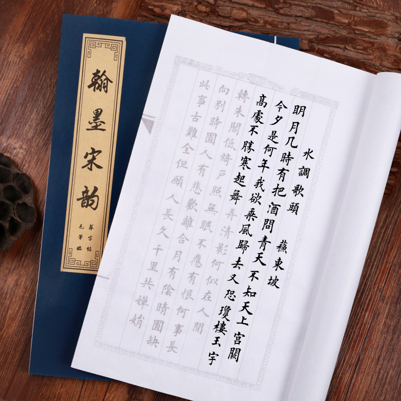 The Song Dynasty calligraphy rhyme Learn Quickly Trace the Copybook Calligraphy Chinese Character Practice Small Rregular Script image
