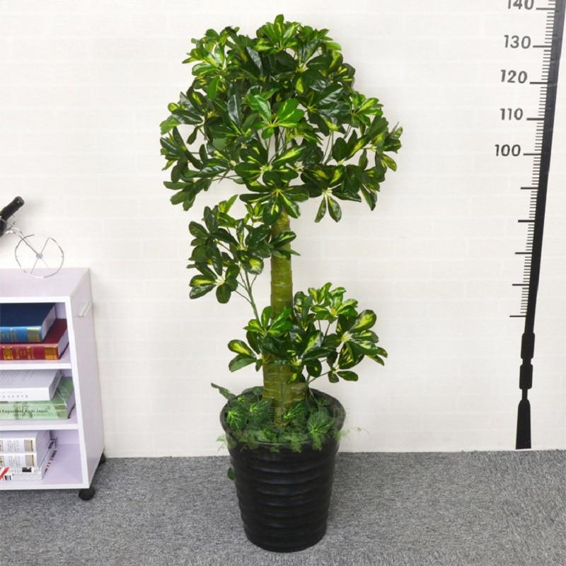 Xoyox.net | Wohnzimmer Pflanzen Große