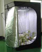 Greenhouse grow tent grow box 80*80*180cm non toxic 600*300D with Aluminum Metal Type