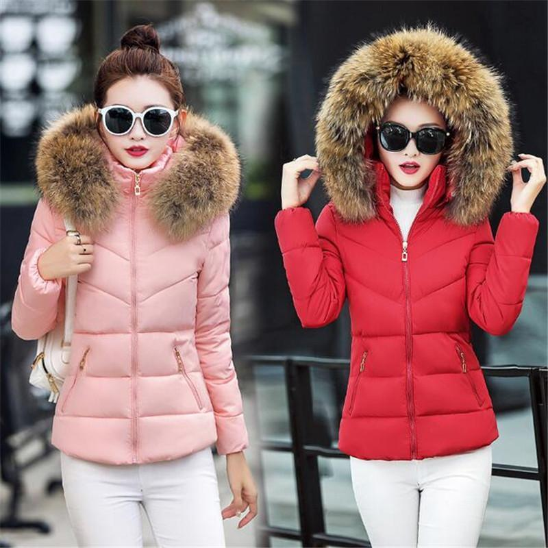 043d9170e2 Fake fur collar Parka down cotton jacket 2016 Winter Jacket Women thick  Snow Wear Coat Lady Clothing Female Jackets Parkas-in Parkas from Women's  Clothing ...