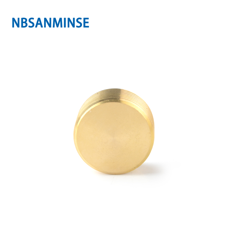 NBSANMINSE 10pcs/lot SM2068 1/2 Hexagonal Socket Cap For Water Heating Copper Brass plug Fitting