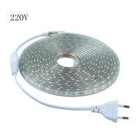 SMD 5050 AC 220V Led Strip Flexible Light 1M 2M 3M 4M 5M 6M 7M 8M