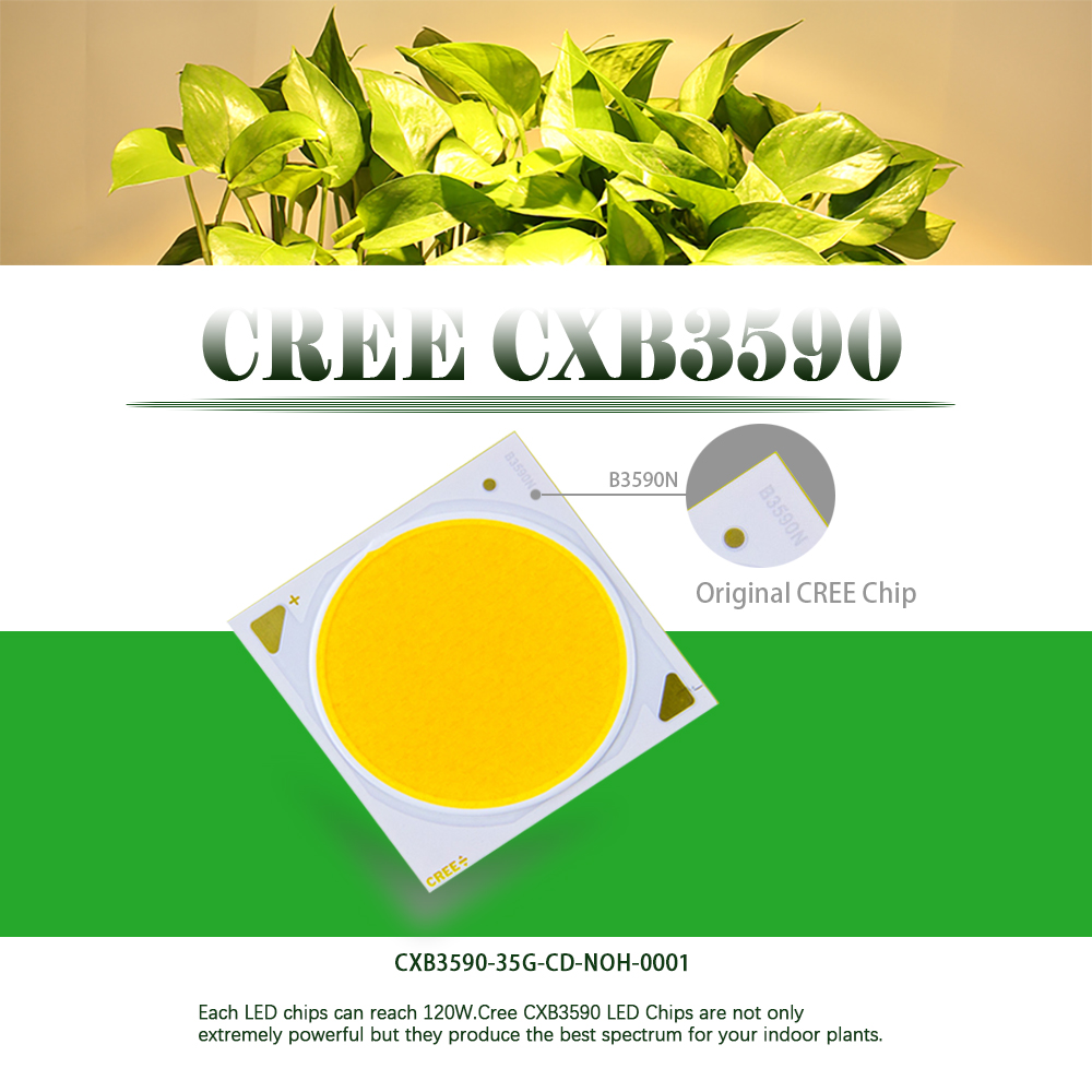 Cree Cxb3590 Cob Led Grow Light Diy Module Full Spectrum Led Grow Lamp Indoor Plant Ideal Holder Meanwell Driver Lpc-60-1400 Led Grow Lights