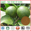 100% Natural e Puro Extrato Synephrine com frete grátis, 100 g/saco