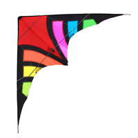 Professional Outdoor Fun Sports 110 Inches Phantom Stunt Kite Easy Flying Power Sport Kites With Flying Tools