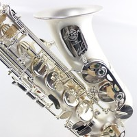 France Salmer Saxophone R54 Professional Music Instrument Eb Tune Alto Saxophone E Flat Brass Matte Silver Plated Pearl Buttons