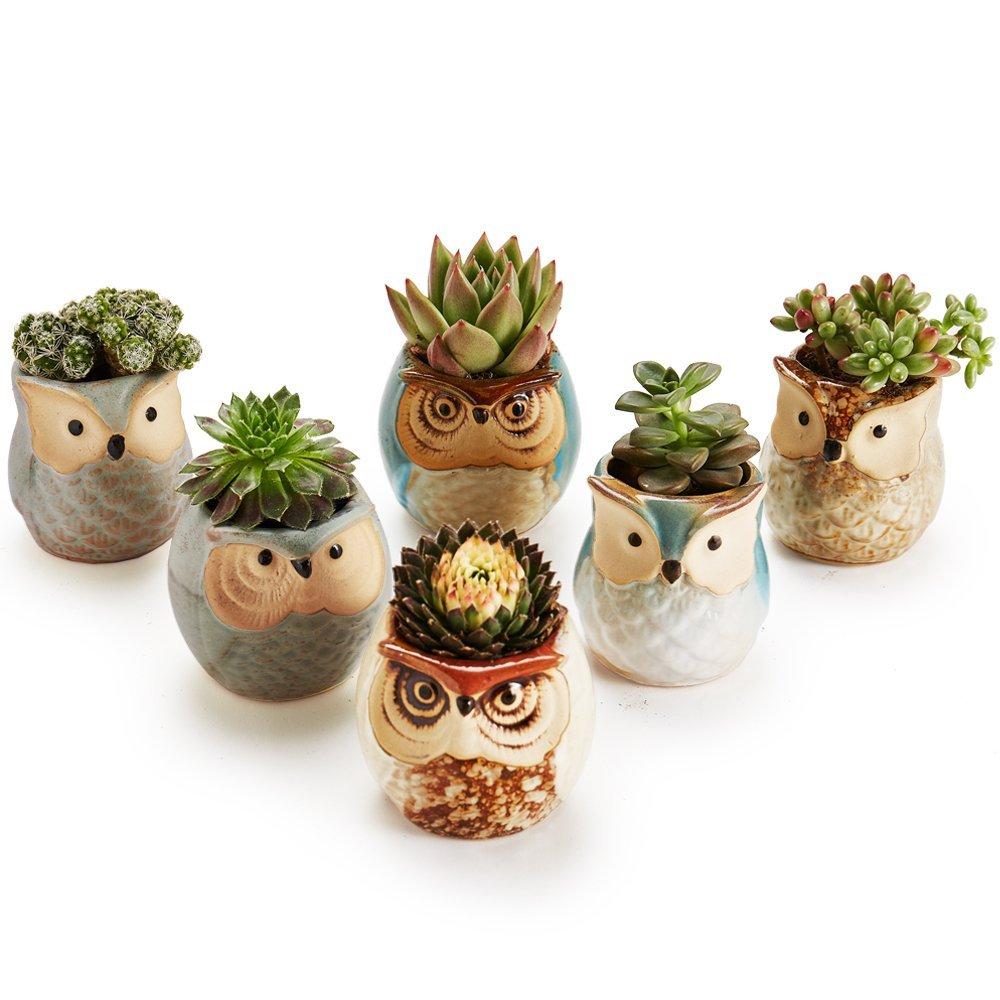 6pcs/lot Ceramic Owl Flower Pots Planters Flowing Glaze Base Serial Set Succulent Cactus Plant Container Planter Bonsai