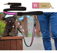 FG64 Free Shipping New Solar USB Rechargeable LED Pet Dog Lead Leash Night Safety Glow Flashing