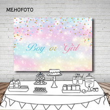 Vinyl Photography Background Gender Reveal Party Boy or Girl Prince or Princess Royal Shower Twin Decor Backdrop Photo Studio