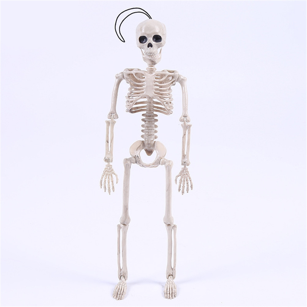Flexible Human Anatomical Anatomy Bone Skeleton Model Medical Wholesale Medical Learn Aid Anatomy Art Sketch 40cm Halloween