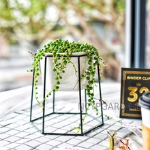 Decorative Black Iron Rack Holder with Ceramic Planter Pot for Succulents Herbs Cactus Plants Coffee Table