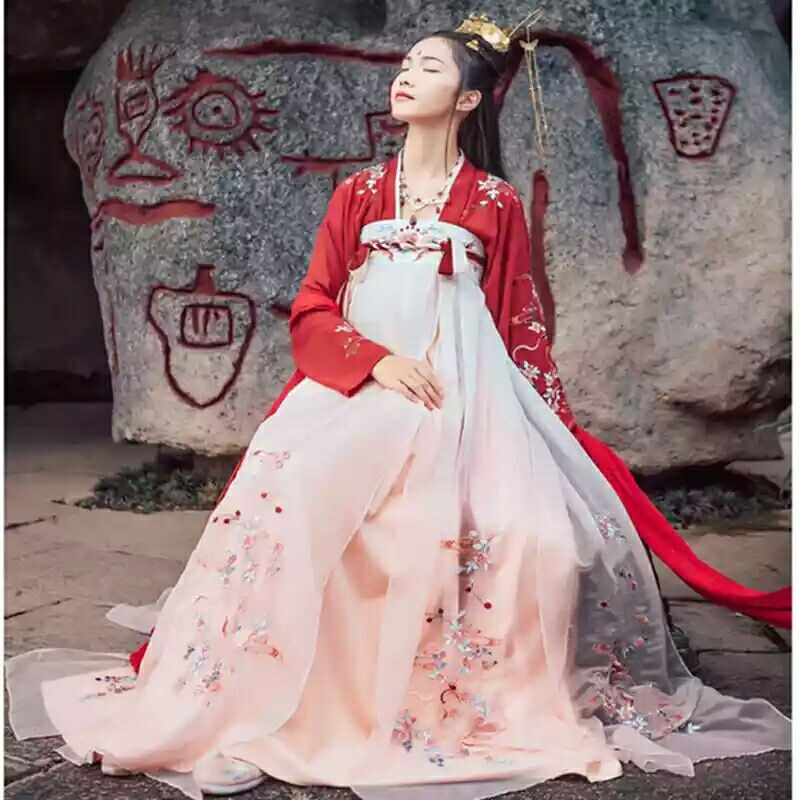 Hanfu Women Costume Tang Dynasty Traditional Ancient Chinese Folk Dance Fairy Skirt Sleeve Length Performance Clothing