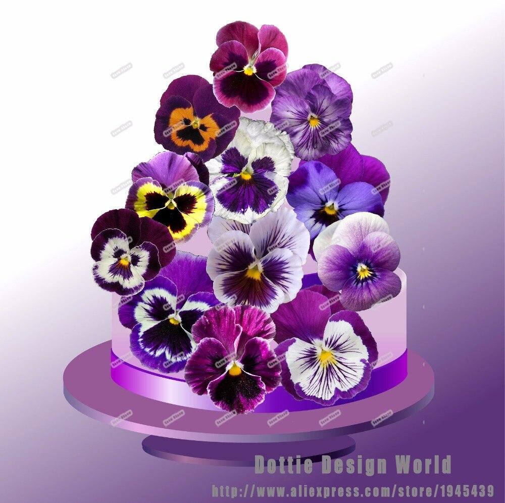 24 Purple Pansies Flower Edible Cake Topper Wafer Rice Paper Cupcake