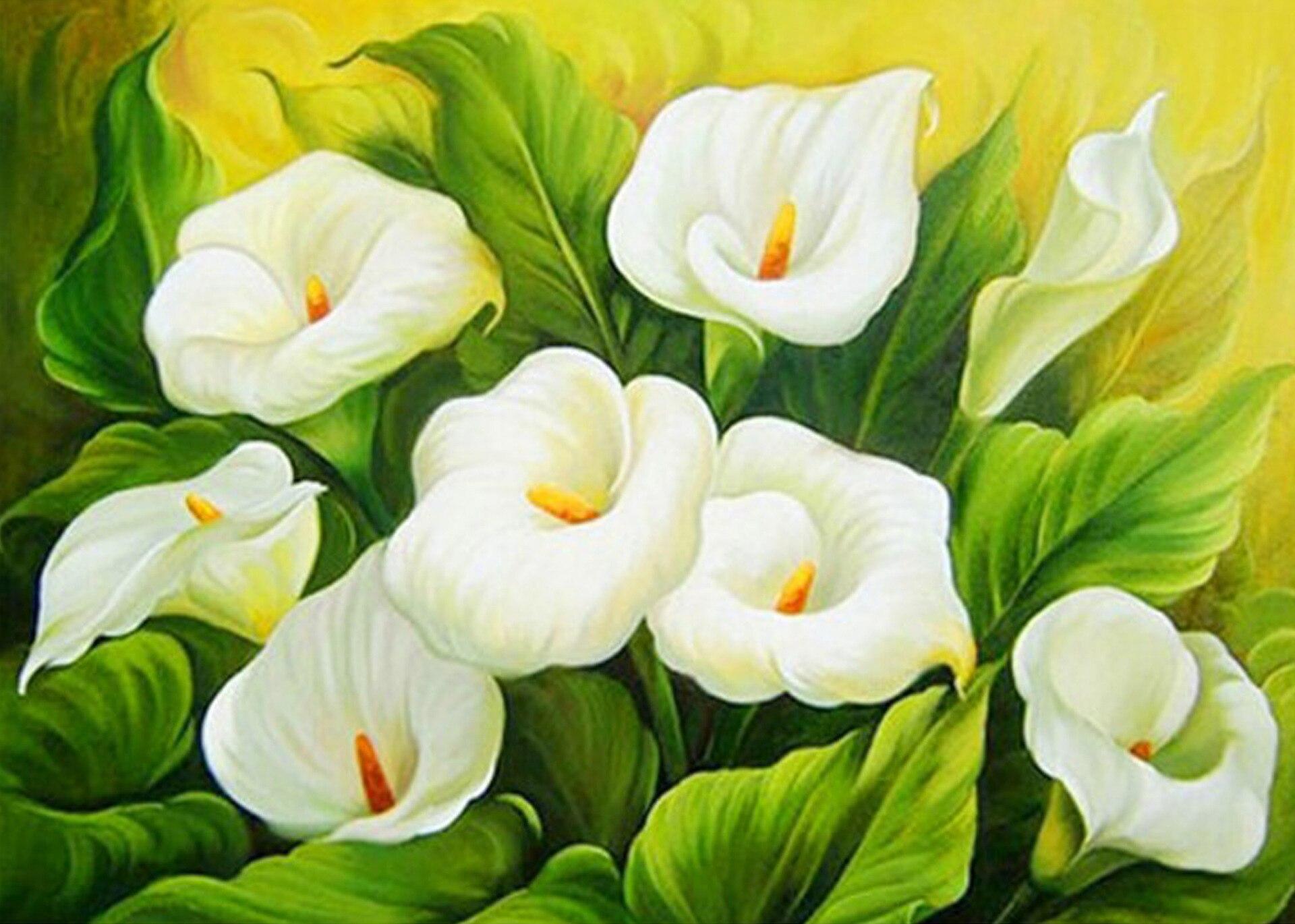 забавные картинка для картины цветы выигрыш гослото