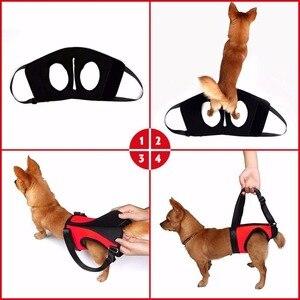 Image 2 - Harnais de harnais pour chiens 2 pièces/ensemble