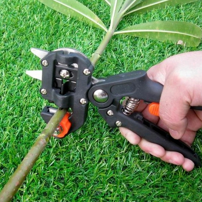 Профессиональный инструмент прививки секатор фрукты ветви деревьев режущего инструмента  ...