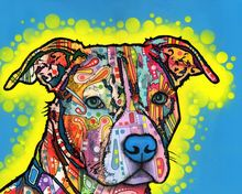 1 panel color abstract painting dog classic oil mural art decoration house framed XJDP-253