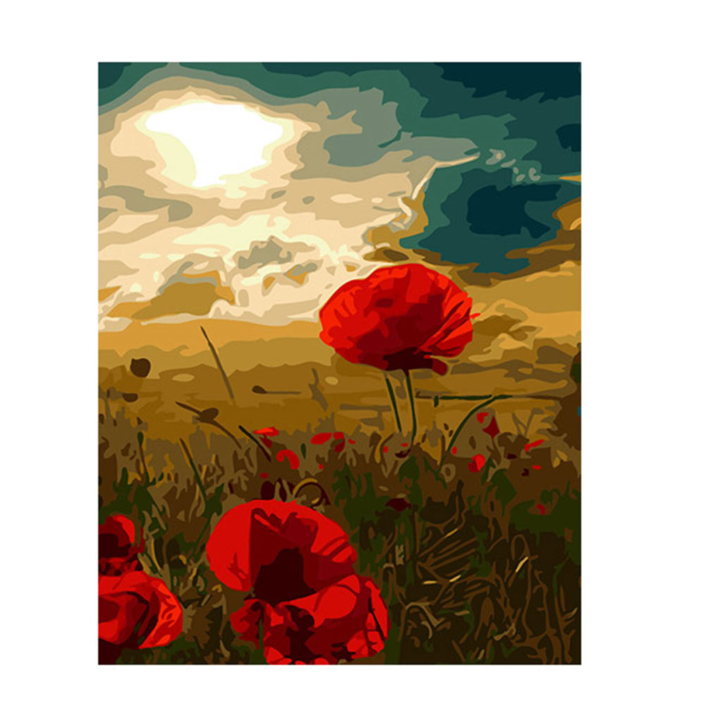 Diy Oil Painting By Numbers 40x50cm Frameless Handpainted Poppies
