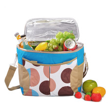 Beer Cooler Bag Ice Pack Lunch Picnic Bag 20L Insulated Thermal Oxfod Material Cooler Bag for Food Storage Ice Bag недорого