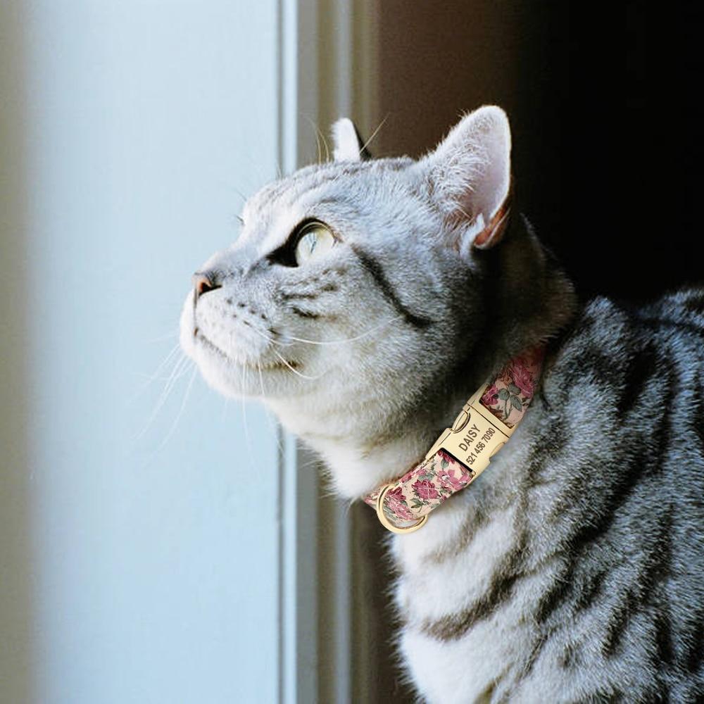 kedi tasması