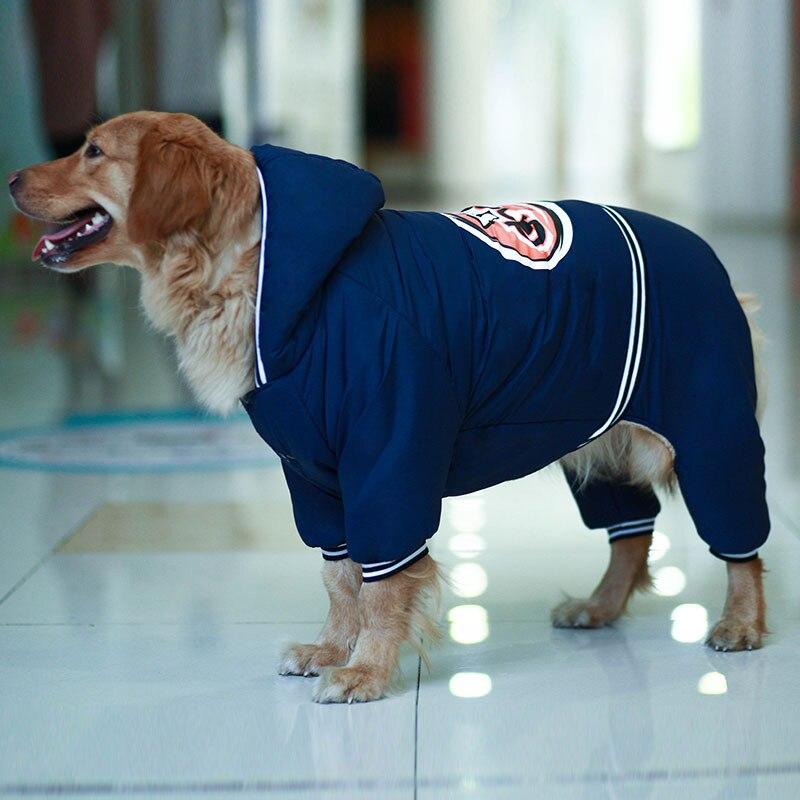 Warm dog clothes (1)