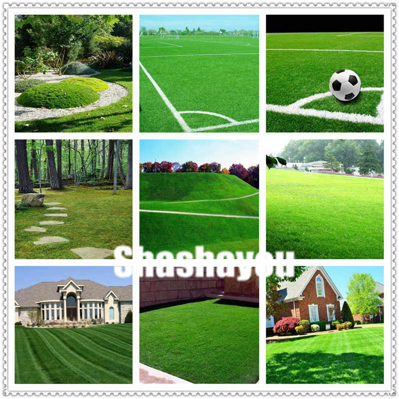 200 Pcs Turf Grass Bonsai Golf Special Grade Evergreen Lawn Bonsai Soccer Fields Villa High Grade Flowers Bonsai Garden Plant