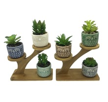 6 PCS Ceramic Owl Succulent Cactus Flower Plant Pots With 2 PCS Treetop Shaped Bamboo Stands for Home Garden Office Decoration