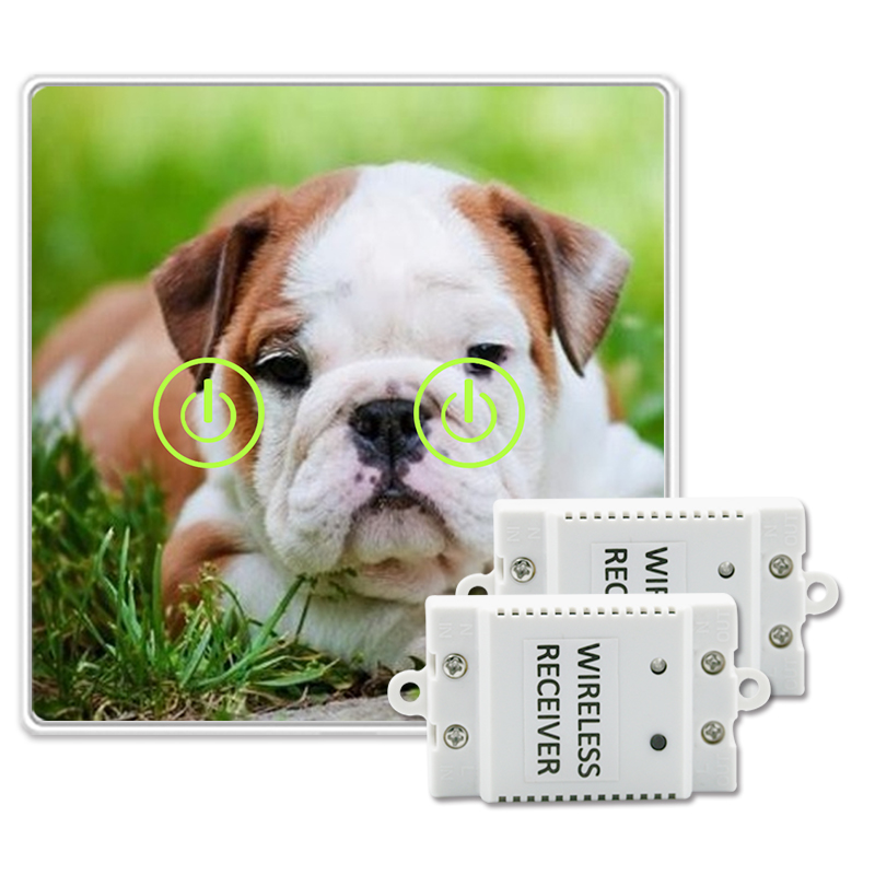 все цены на Saful Picture Painting DIY Customized Glass Design Wireless Touch Switch 2 Gang 2 Way Remote Control Touch Switch онлайн