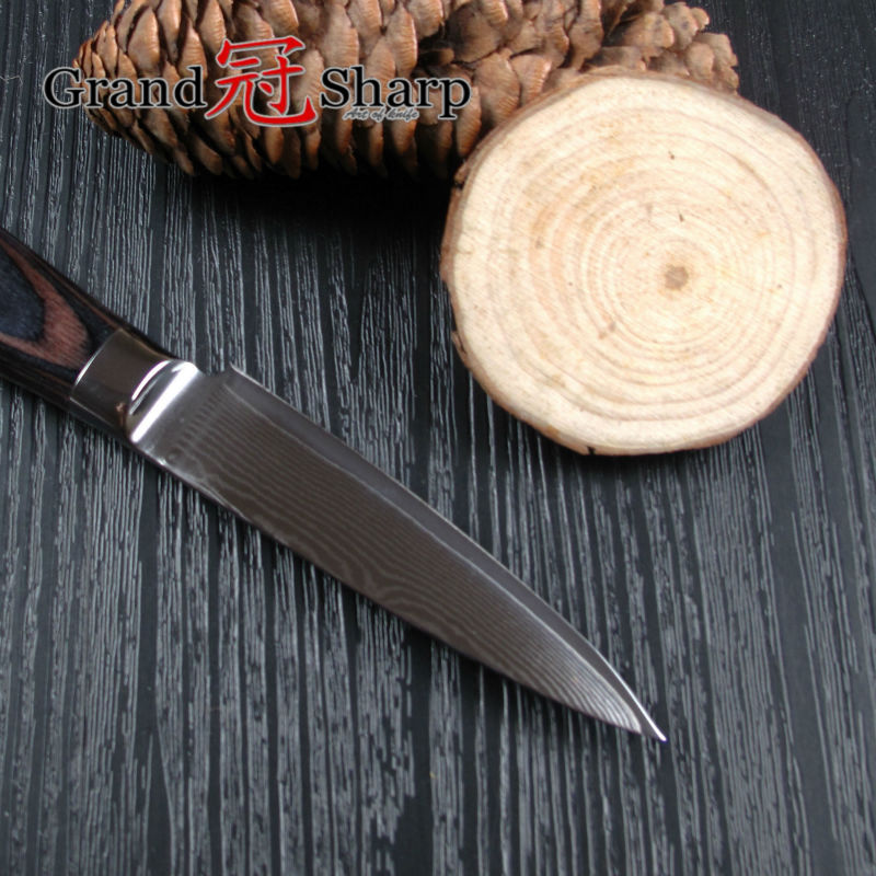 GRANDSHARP 3 5 Inch Paring font b Knife b font High Quality 67 Layers Japanese Damascus
