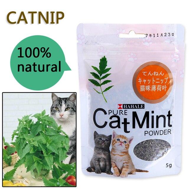 Digestivo Dell'animale Domestico Fornisce Organico Premium Gatto Tratta di Cibo