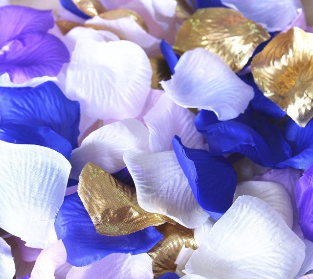 1000pcs bulk rose petals special blend blush white cream pink tips 1000pcs bulk rose petals special blend blush white cream pink tips artifical wedding flower girl basket mightylinksfo