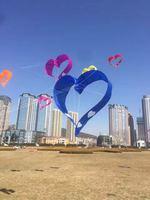 برنامج رياضي جديد للمتعة في الهواء الطلق ثلاثي الأبعاد طائرة ورقية على شكل قلب