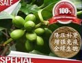 Weight Loss Creams Plant Extracts 25% Green Coffee Bean Extract Chlorogenic Acid Powder 1000g