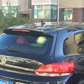 Funny 3D Car Stickers Auto Car Ball Hits Car Body Window Sticker Self Adhesive Baseball Tennis Basketball Football Funny Decal